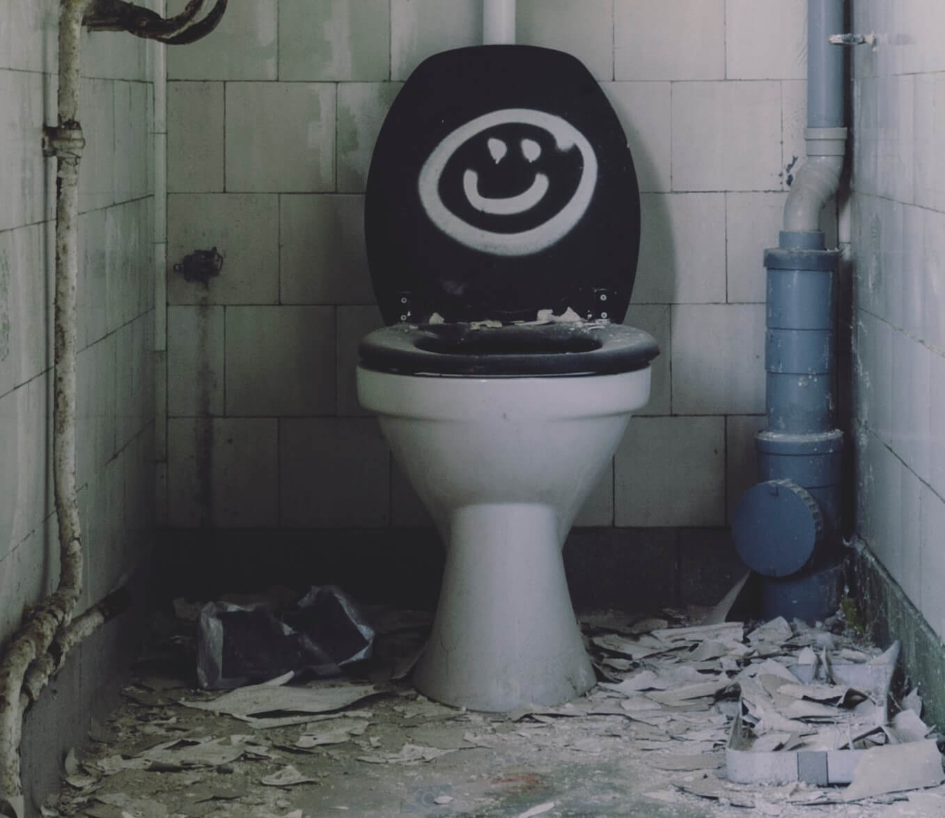 Plumbers Glasgow - Clearing a Blocked Toilet